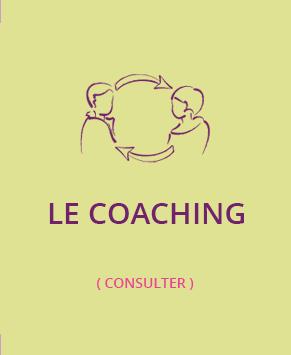 Thisis Formation Conseil et Coaching spécialisé Public en situation de Handicap à Avignon Vaucluse